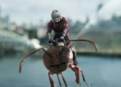 مورچه ای ها نیم میلیاردی شدند، استقبال از فیلم در چین