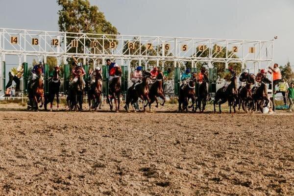 هفته هشتم کورس اسبدوانی تابستانه بندرترکمن برگزار شد