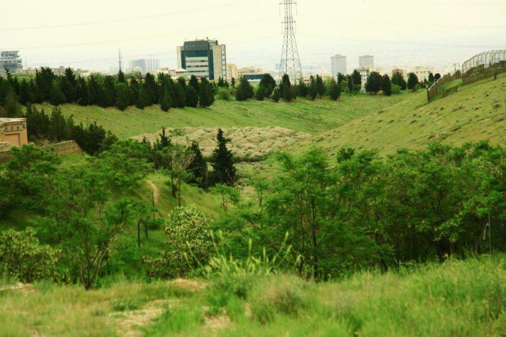 تمامی بوستان های جنگلی شمال شرق تهران تا اطلاع ثانوی تعطیل شد