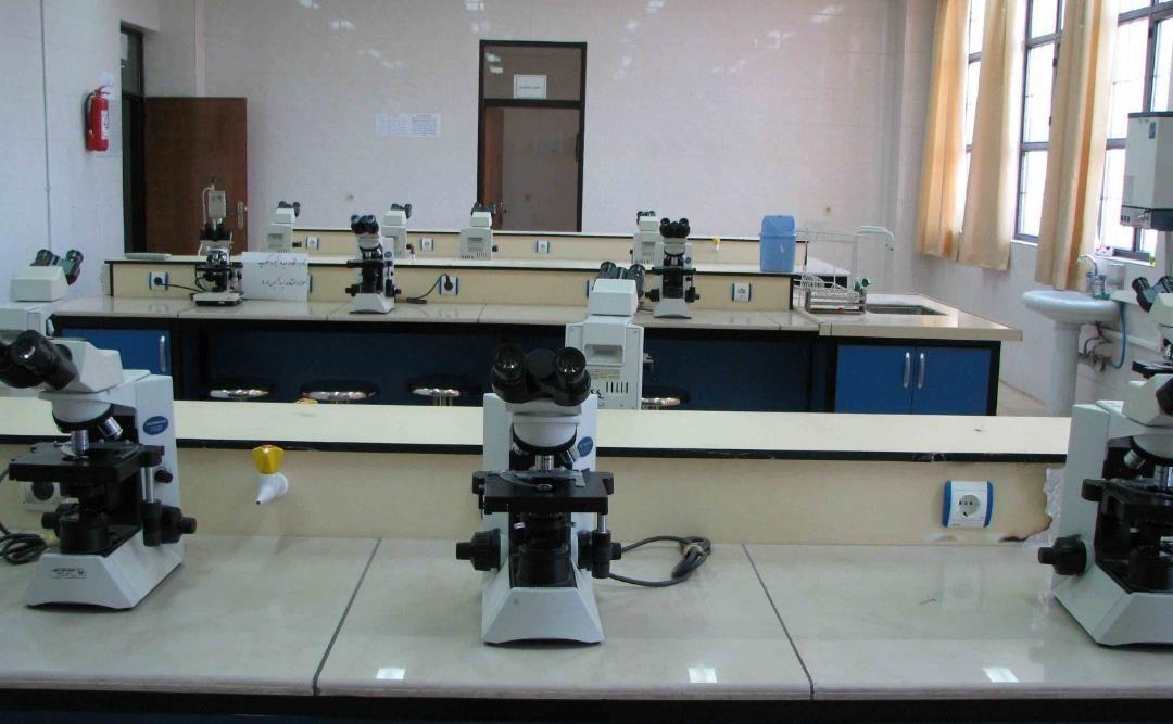 3 مرکز تحقیقاتی جدید در دانشگاه آزاد اسلامی شهرکرد راه اندازی می شود