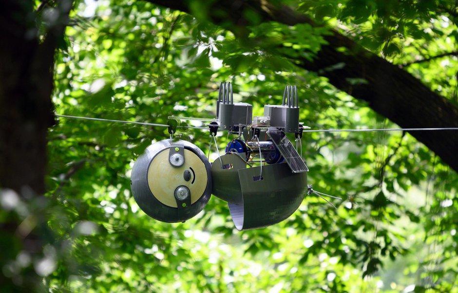 محققان برای مراقبت از باغ میوه روبات تنبل ساختند ، تدبیری مناسب برای گونه های گیاهی درحال انقراض