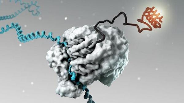 پیامرسان RNA واکسن کووید-19 را برای ما آورد؛ آیا درمان را هم خواهد آورد؟