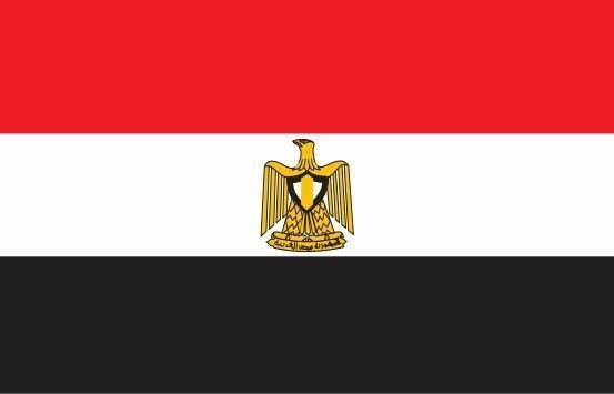 مصر عضو دفتر اتحادیه آفریقا شد