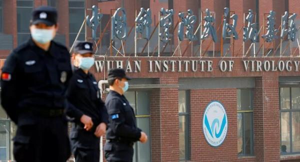 انتشار اسنادی در توضیح پژوهش با حمایت آمریکا در لابراتوار چینی درباره کروناویروس های خفاش ها